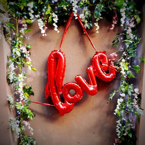 Love Red Plant