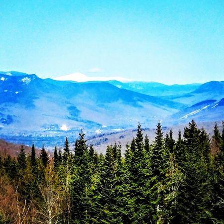 Lgv10photography The Great Outdoors - 2016 EyeEm Awards White Mountains New Hampshire
