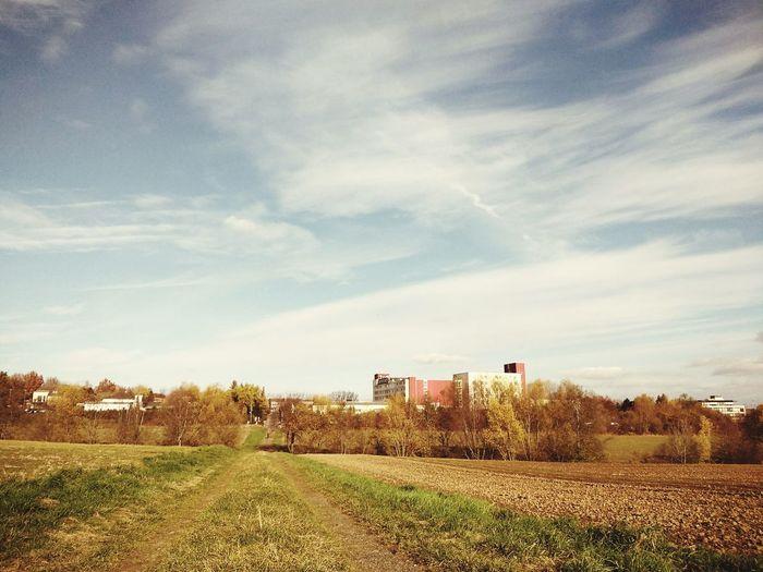 autumn First
