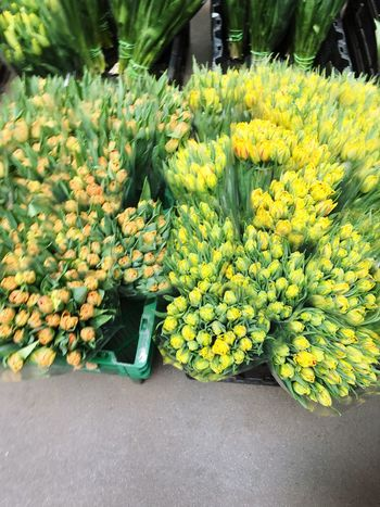 Freshness Retail  Yellow Market Abundance For Sale Flower Outdoors Market Stall Fruit Day Choice Fragility Flower Market No People Nature