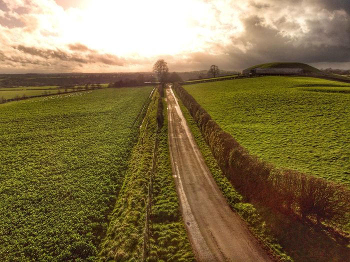 The golden path Drone Photograph DJI X Eyeem DJI Mavic Air Sky Land Environment Landscape Nature Field Agriculture Rural Scene Cloud - Sky Crop  Growth Tranquility Green Color Sunset Farm Beauty In Nature Scenics - Nature Tranquil Scene Plant No People