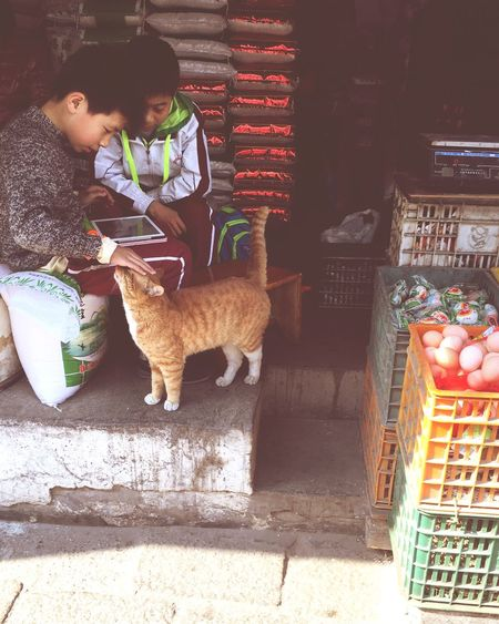 Kids Cat 生活 People Watching People Photography China Life Suzhou, China Normal Day Old Town 平淡 Lifestyles
