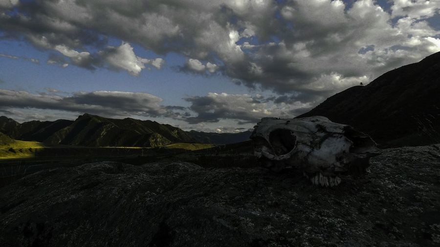 Skull Journey Beauty In Death Screensaver Landscape 16x9photography 16:9 Altay No People Cloud - Sky Atmospheric Mood Tourism