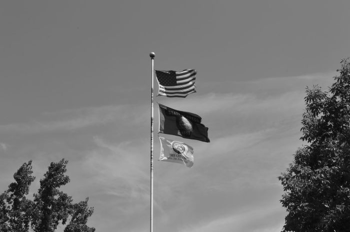 Flags Over Ashland Flag Patriotism Low Angle View Cloud - Sky Politics No People Outdoors Day Sky Democracy Tree Politics And Government Ashland, OR Oregon