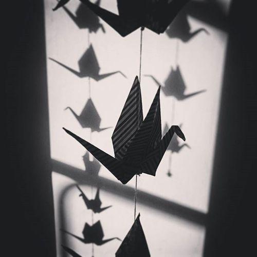 Encore un truc de bridés. Origami Photodasiatique Blackandwhite