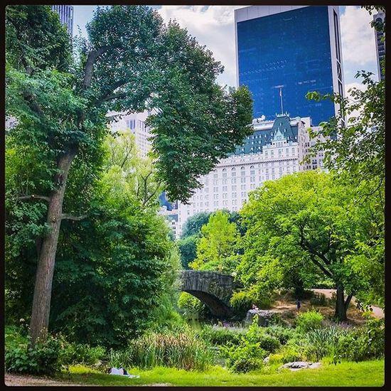 Central Park @rach3llxx NYC Newyork CentralPark Holidaymemories Greenspace
