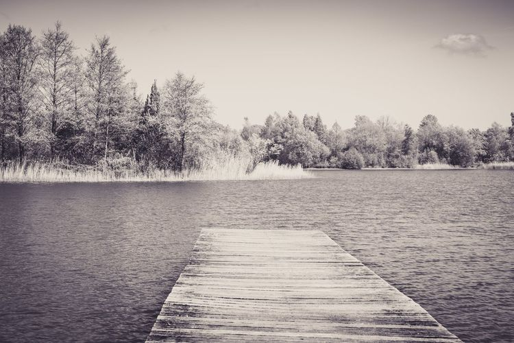 lake at our camping place Camping Outdoors Water Waterfront Tree Nature Day Wooden Pier Lake Landscape Blackandwhite Bnw Art Water Tree Sky Shore Calm Tranquility Countryside Scenics Tranquil Scene Idyllic My Best Photo