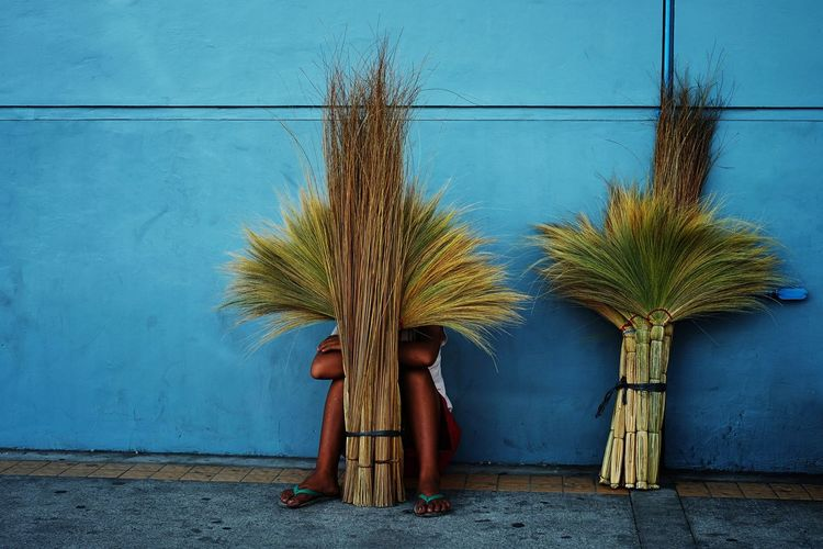 Person hiding behind brooms against wall