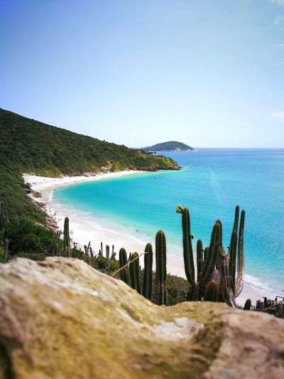 Bom dia✨ O paraíso é aqui, Arraial do Cabo 😃 Paradise Arraialdocabo Pontaldoatalaia Blue Sea EyeEm Nature Lover Photooftheday Huaweiphotography Linda Relivebrasil Huaweimate9 Strava Saguaro Cactus Rocky Mountains Barrel Cactus Rock Formation Shore Natural Arch