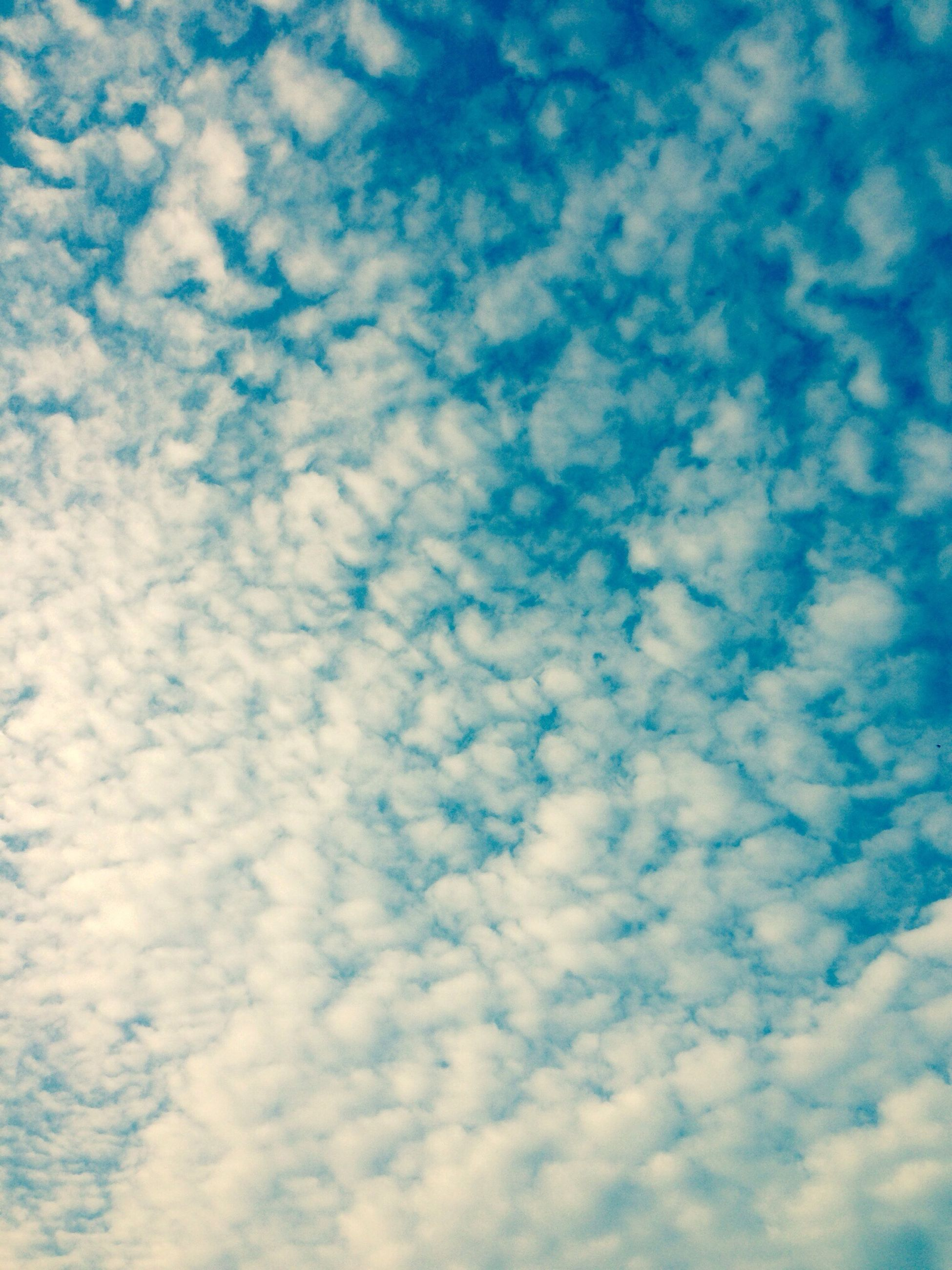 sky, low angle view, cloud - sky, blue, sky only, beauty in nature, backgrounds, tranquility, scenics, full frame, nature, tranquil scene, cloudy, cloudscape, cloud, white color, idyllic, outdoors, day, no people