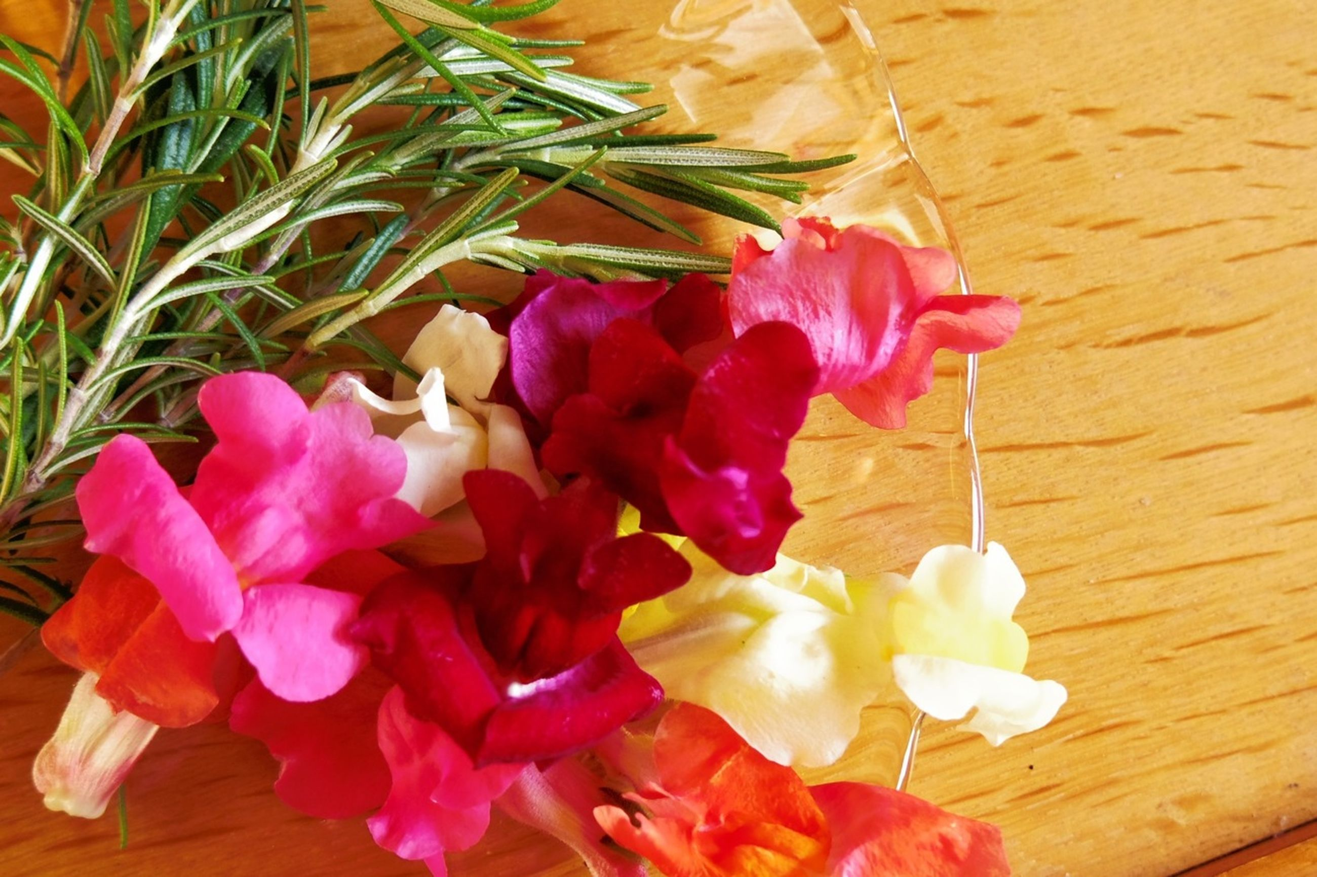 flower, petal, freshness, fragility, flower head, indoors, pink color, rose - flower, close-up, beauty in nature, tulip, stem, nature, vase, table, plant, high angle view, growth, still life, no people