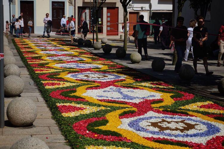 Multi Colored Viladoconde Fuji Xt-10 Corpus Christi Tradições Tapetedeflores Tapetes