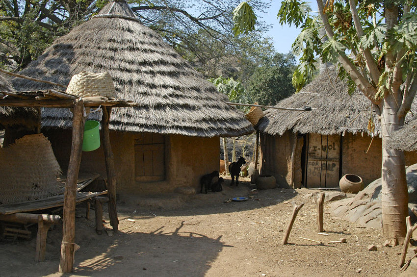 Ibel & Iwol traditional villages Senegal Traditional Culture African Village Architecture Bassari Bassari Country Building Exterior Built Structure Day Iwol Nature No People Outdoors Senegal Shelter Thatched Roof Traditional Tree Village