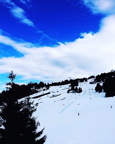 Ski Snow ❄ Chamrousse Winter Nature Sky Cold Temperature Tree Blue Beauty In Nature