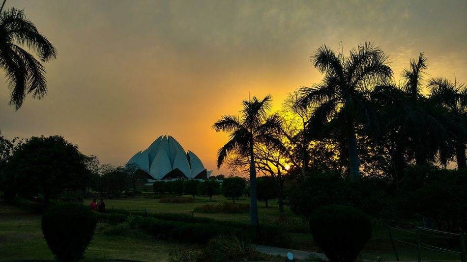 Lotustemple Newdelhi India Sunset Beautiful Nature Delhidiaries Collegediaries Palmtrees Photography Colors Skies SonyDSCH100