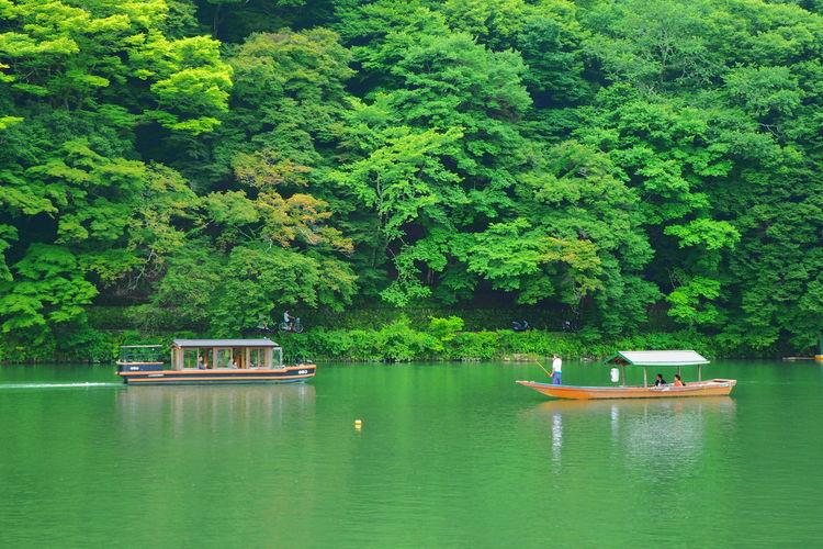 Tree Water Green Color Nature Nautical Vessel Lush Foliage Outdoors Lake Beauty In Nature Tranquility Day Growth Transportation No People Forest Pedal Boat Scenics Arashiyama Katsura River Kyoto Bort