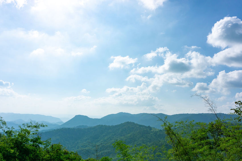 Cloud - Sky Sky Beauty In Nature Tree Plant Tranquility Scenics - Nature Tranquil Scene Nature Day Non-urban Scene Mountain Green Color Growth Idyllic No People Environment Outdoors Landscape Mountain Range