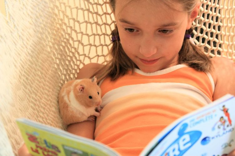 Cute girl with hamster reading book in hammock