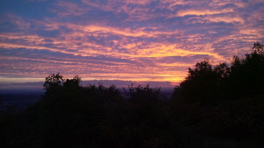 Beauty In Nature Cloud - Sky Evening Forest Outdoors Sky Summer Summer ☀ Summr Sunset