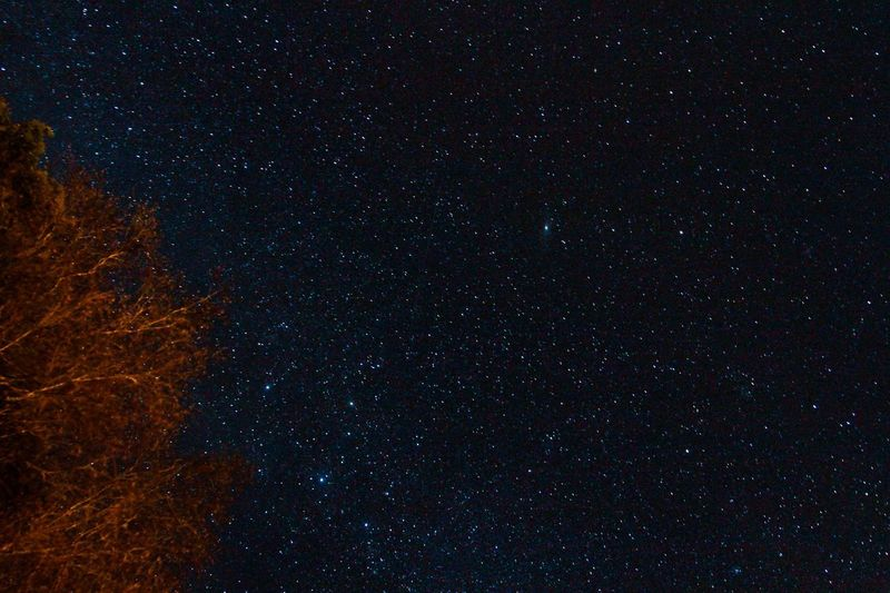 Astronomy Star - Space Night Constellation Galaxy Space Beauty In Nature Sky Star Field No People Swan Outdoors Scenics Nature Backgrounds