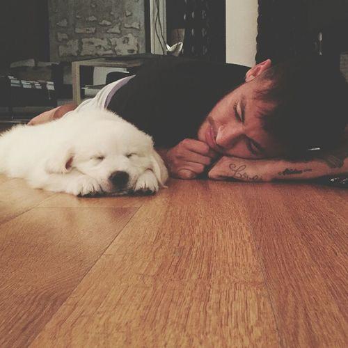 Neymar  Dog Sweet