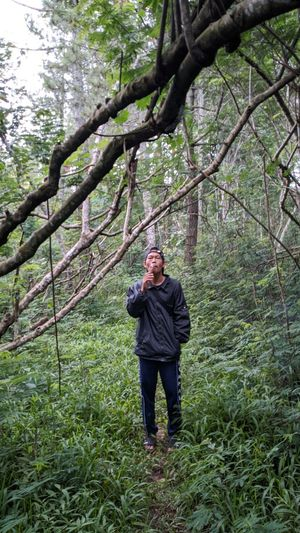 Full length of man standing in forest