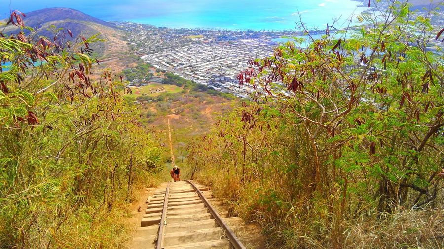 Hardway Trail Mountain Goforward Dontgiveup Landscape Beauty In NatureEyeEm Best Shots Sea EyeEmbestshots Blue Sky The Way Forward Earth_Collections CaptureTheMoment Gorgeous View Hawaii USA Landscapephotography Awesome_view Colors Taking Photographs Kokohead Nature_collection Clear Sky Landscape_Collection