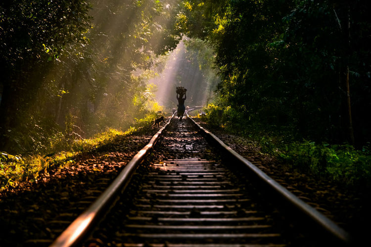 Silhouette person walking on railroad tracks in forest