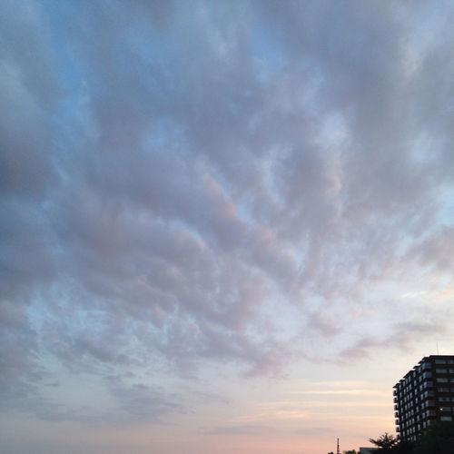 Clouds And Sky 新潟まつり 今日も花火🎆