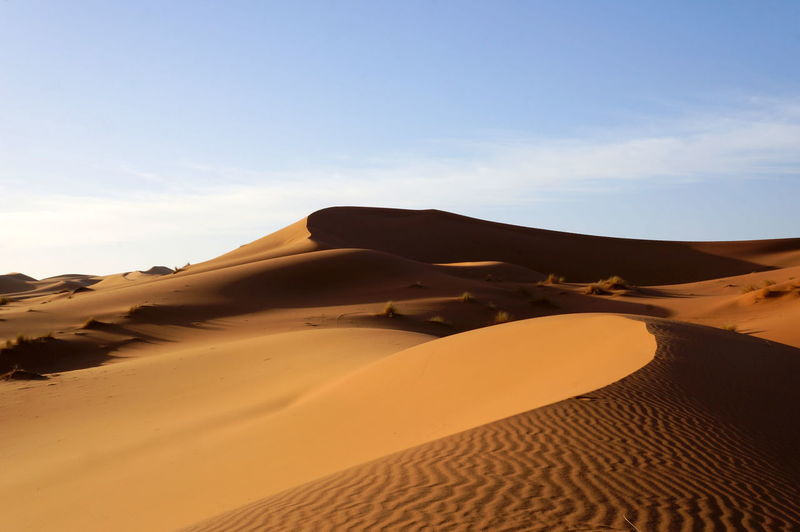 Adventure Beautiful Beauty In Nature Clear Sky Day Desert Erg Chebbi Landscape Nature No People Outdoors Sand Sand Dune Sky Travel