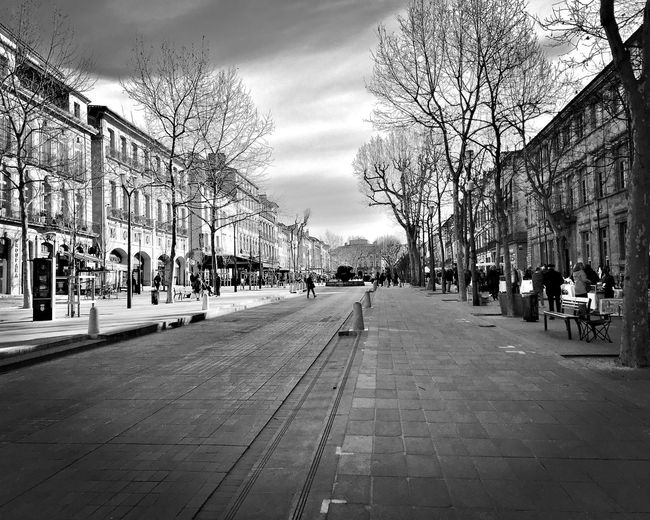 Footpath amidst bare trees and buildings in city