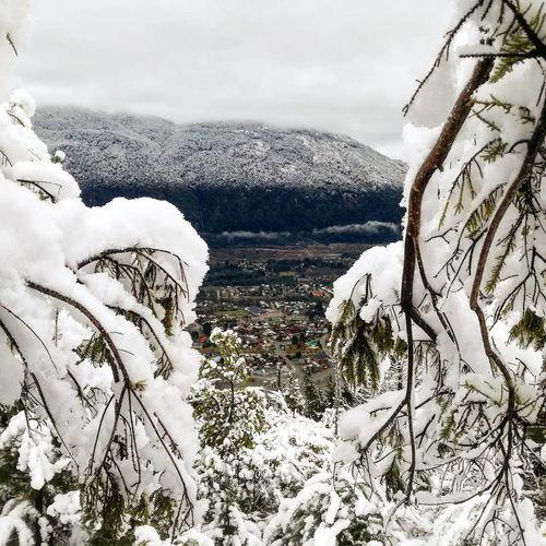 Snow Mountain Cold Temperature Winter Polar Climate Frozen Snowcapped Mountain Tree Weather Rural Scene Mountain Ridge