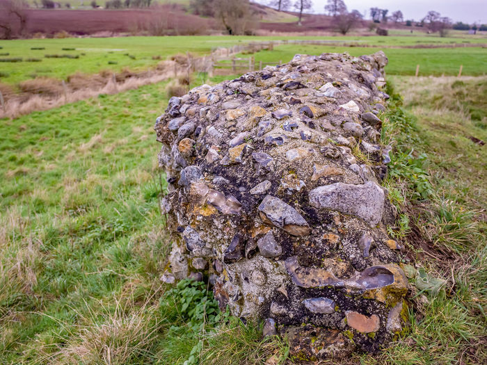 Close-up of old rock on field
