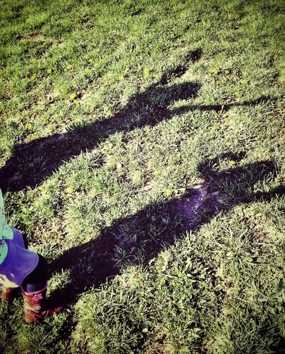 Shadowplay Nieces Fun In The Sun Stopping Time