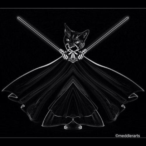 Darth Kitty Paulmeddler23 