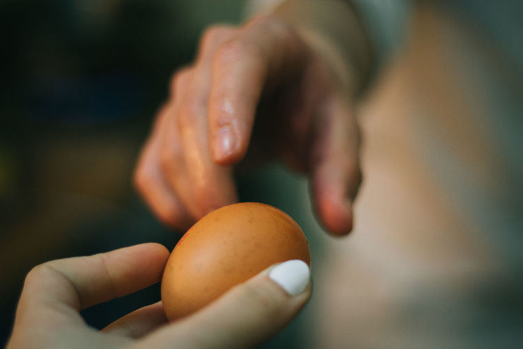 Cropped Image Of Person Giving Brown Egg To Friend