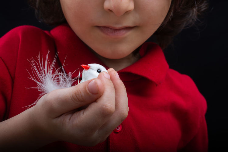 Little boy holding a fake white bird on dark background Abstract Animal Arm Artificial Beauty Bird Bird Cage Bird Silhouette Birdcage Bond Cage Captivity Care Chicken Concept Concepts Conceptual Cute Dove Escape Fake Feather  Flying Freedom Love Birds Lovely Nature Object Old Ornament Peace Pet Wing