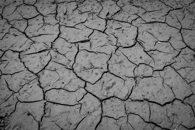 Arid Arid Climate Aridity Barren Black And White Capture The Moment Climate Change Cracked Dearth Death Drought Dry Dry Earth Dryness EyeEm Best Shots - Black + White Famine Global Warming Global Warming Effect Heat Heat - Temperature Hot Hot Summer Hot Summer Day Hunger Natural Pattern
