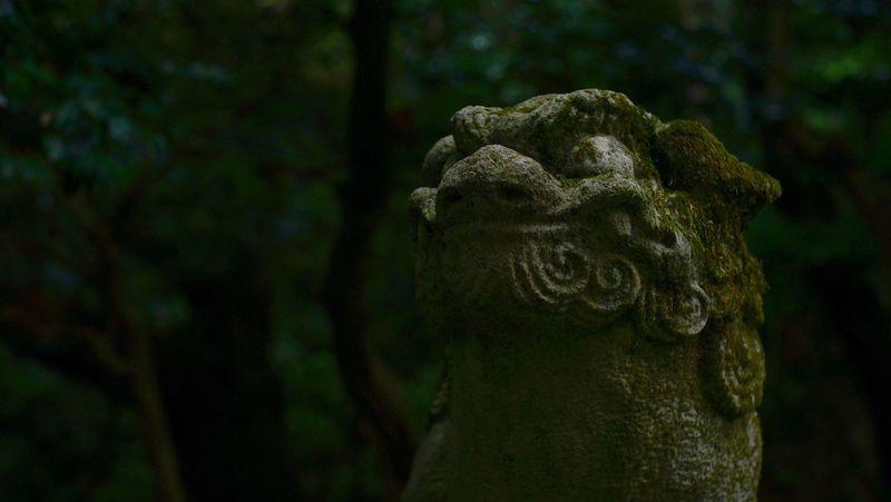 Art And Craft Statue Gurdian Dogs Shrine Shrine Of Japan Japan Green Color Travel SONY A7ii Summarit5cm