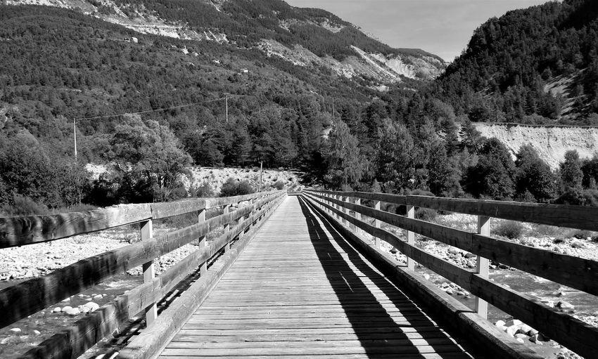 Narrow footbridge along trees on mountains
