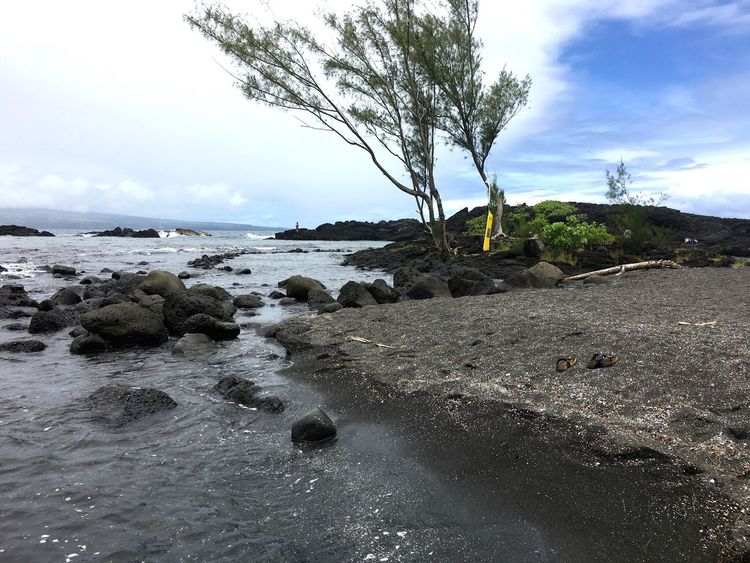 Sky Water Nature Sea Tree Tranquil Scene Rock - Object Outdoors Scenics Beach Tranquility Beauty In Nature No People Day Sand Motion Blacksandbeach Beachphotography