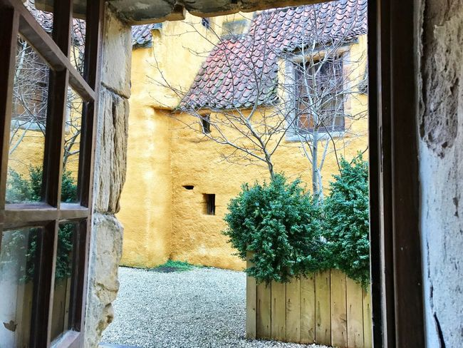 Culross Palace, Culross, Fife Architecture Window Built Structure Building Exterior No People House Door Day Tree Plant Hanging Outdoors Branch Nature