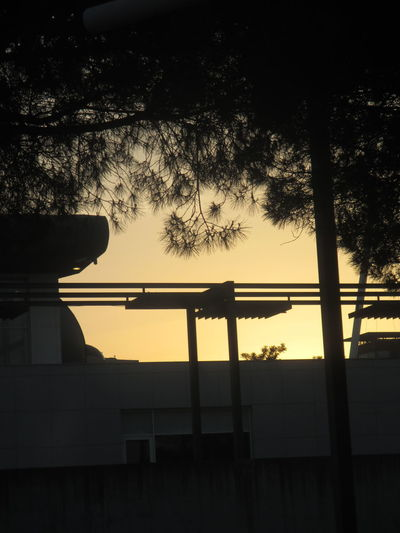 Paint The Town Yellow Architecture Beauty In Nature Building Exterior Built Structure Day Low Angle View Nature No People Outdoors Silhouette Sky Sunset Tree