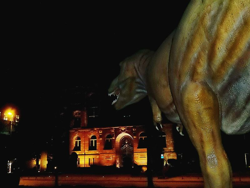 T Rex Attack Huge Sculpture Senckenberg Museum Arts Culture And Entertainment ArtWork Illuminated Building Exterior Architecture Outdoors No People Nightshot🌙 Frankfurt Am Main Germany🇩🇪 BYOPaper! Adventures In The City