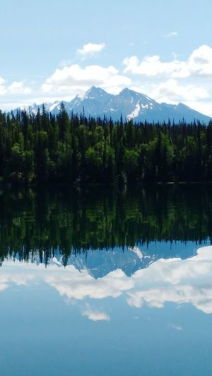 Reflecting peaks Reflection Lake Mountain Tree Water Scenics Sky Mountain Range Forest Nature Tranquil Scene Tranquility Symmetry Beauty In Nature Landscape Outdoors Summer Canoeing Camping Canada Britishcolumbia Bowron Lake