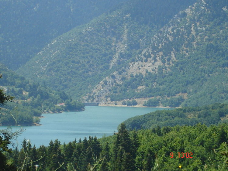Tree Nature Water Beauty In Nature Scenics Lake Outdoors No People Mountain Sky Day Plastira Lake, Karditsa Plastira Lake Landscape Barrier EyeEmNewHere EyeEmNewHere The Great Outdoors - 2017 EyeEm Awards