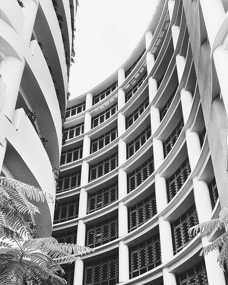 The new hospital in the town👌 Curiosity made me check it out. Architecture Hospital Continuation HDR Hdrmania Instagood Insta Visualsgang VisualArt  Curious Blackandwhite Photographer Photooftheday Health Development Concretejungle Highrise Rooftop Roof Shot