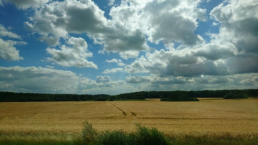 Driving through Germany. Germany Landscape Countryside Fields Riding Driving Driving Around Cross-country Crosscountry Bus Ride On The Bus Clouds Clouds And Sky Nature Beauty Green Adventure On The Highway Rural Scene Agriculture Field Crop  Farm Sky Landscape Cloud - Sky