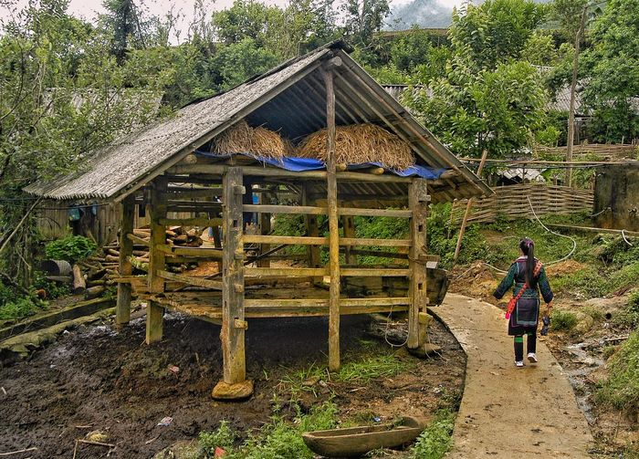 Vietnam SAPA Built Structure Real People One Person Architecture Childhood Day Full Length Child Lifestyles Casual Clothing Men Nature Plant Leisure Activity Women Walking Boys Females Standing Outdoors