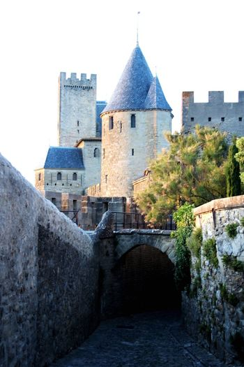 Architecture History Built Structure Building Exterior Castle No People Outdoors Sky Day Tree France Carcassone, France Carcassonne Arch Castles Architecture Travel Destinations Green Color Castle Medieval Fort